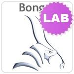 bongo-lab