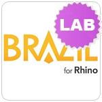 brazil-lab